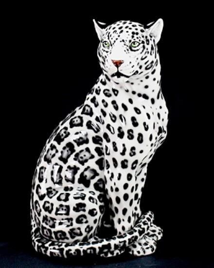 Black&white jaguar, mouth closed