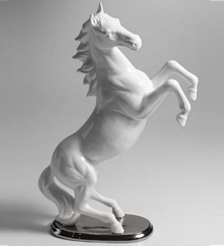 Weißes Pferd aufgestellt