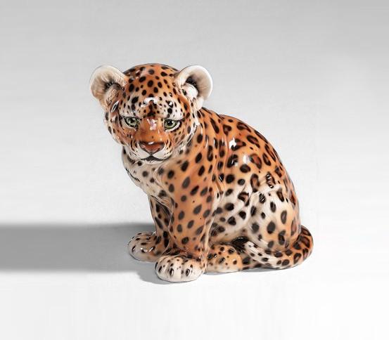 Leopardjunges