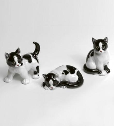Trio of kittens