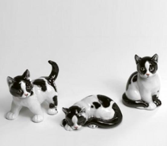 Trio der Kätzchen