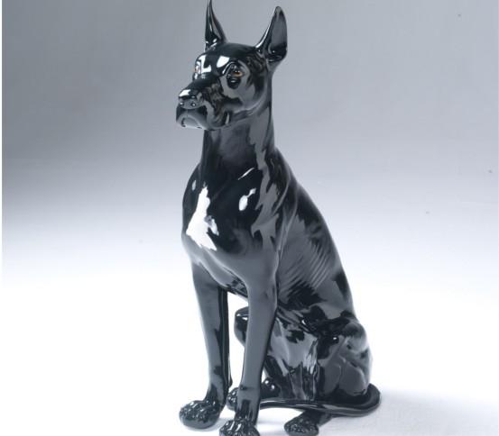 alan dog