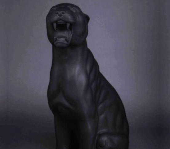Black matt panther